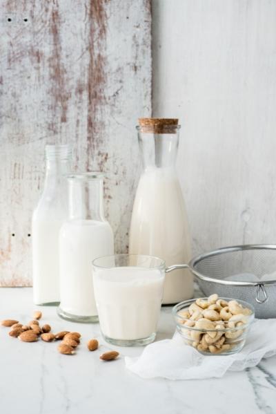 Blendtec taimsed piimad